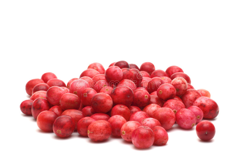 Cowberry. Fresh cowberry on white background royalty free stock images