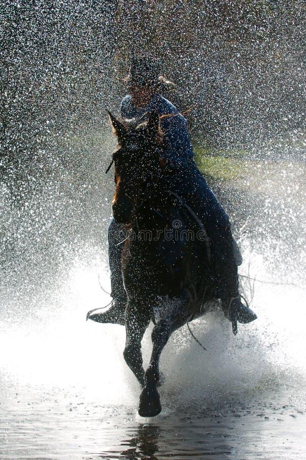 Download Cowboy Royalty Free Stock Image - Image: 1716516