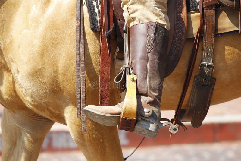 Cowboy royalty-vrije stock afbeeldingen