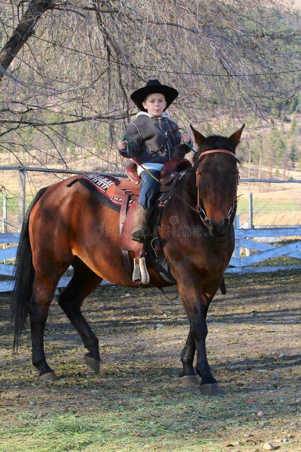 Cowboy stockfotos
