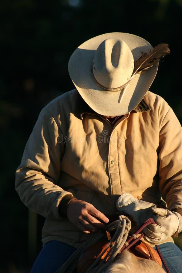 Cowboy all'indicatore luminoso di alba fotografia stock