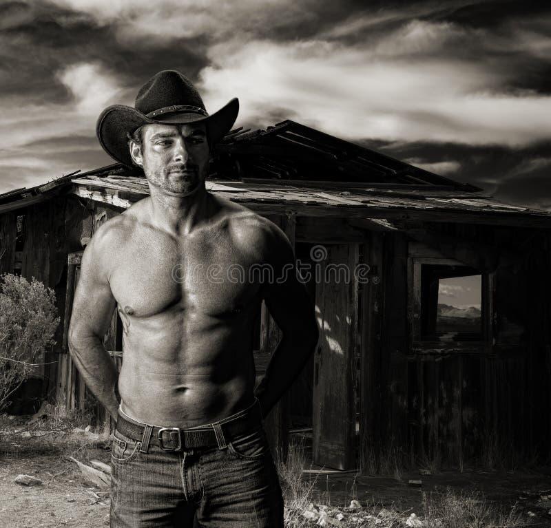 Cowboy au crépuscule devant une vieille carlingue photo stock
