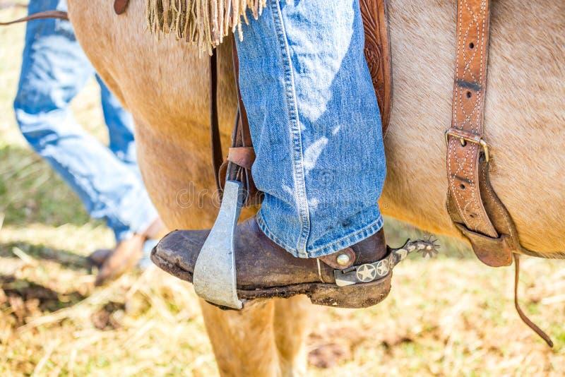 Cowboy auf einem Pferd stockfoto