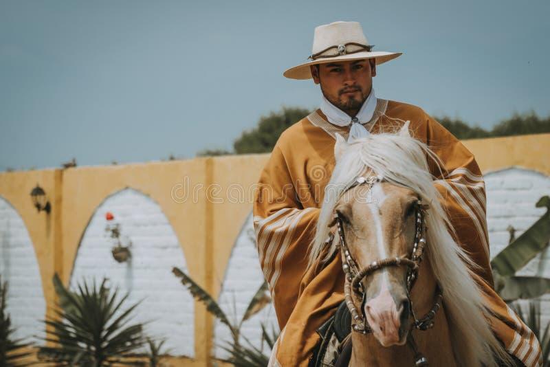 Cowboy auf Pferd mit Kopienraum stockbild