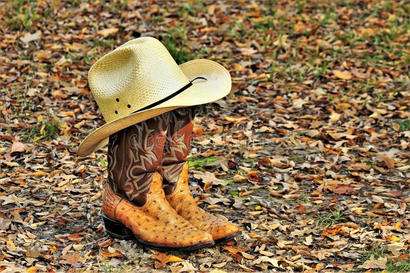 Cowboy Boots en Hoed in Autumn Leaves stock foto's