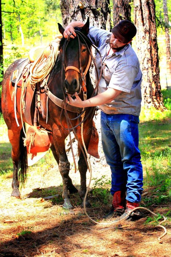 Cowboy Bridles Horse fotografia stock