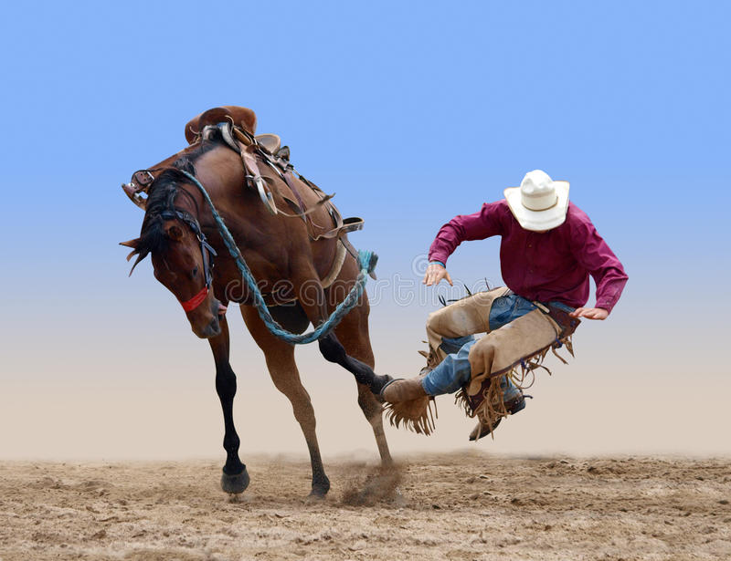 Cowboy bucked of a bucking Bronco royalty free stock image