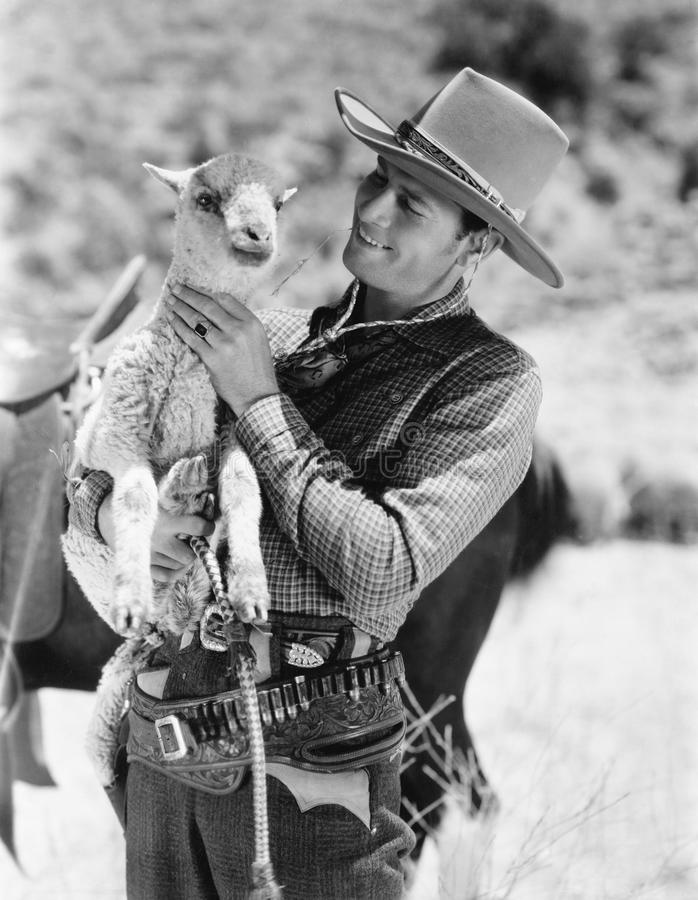 Cowboy carrying a lamb and smiling stock images