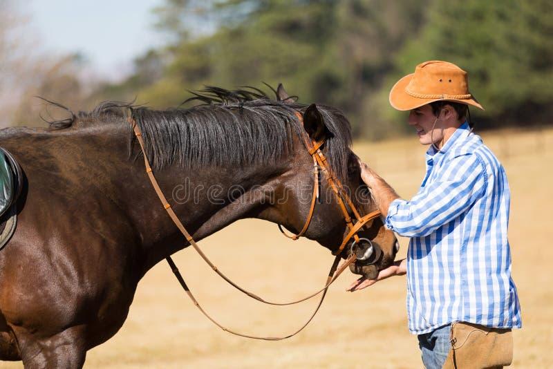 Cowboy che alimenta il suo cavallo fotografia stock