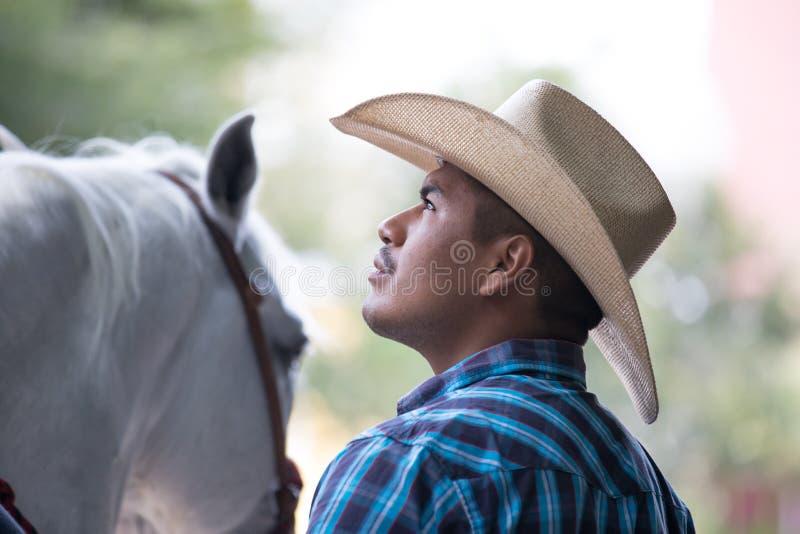 Cowboy che lavora con un giovane cavallo fotografia stock libera da diritti