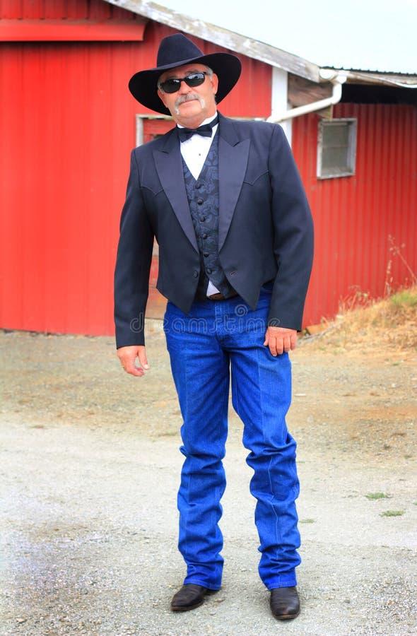 Cowboy convenzionale immagini stock