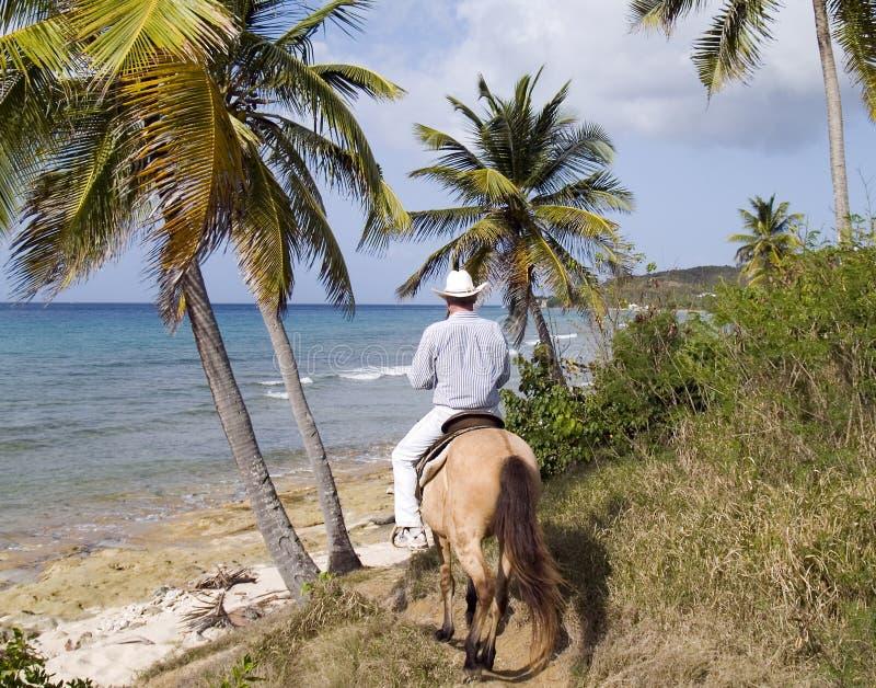 Cowboy d'île par l'océan photos stock