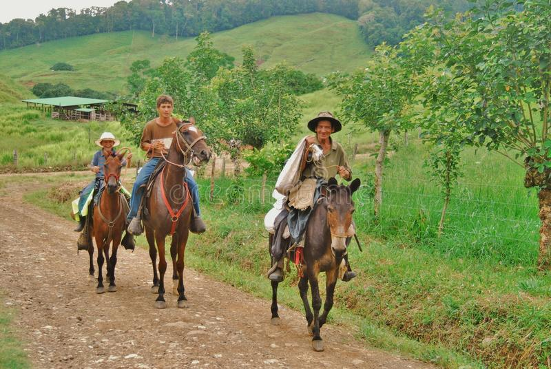 Cowboy de Costa Rica fotografie stock
