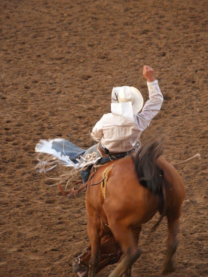 Cowboy de rodéo images stock