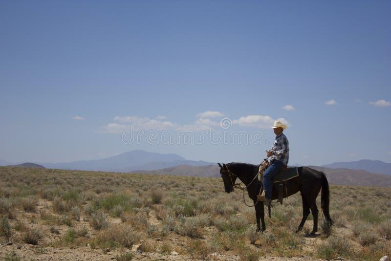 Cowboy in de Woestijn royalty-vrije stock afbeeldingen