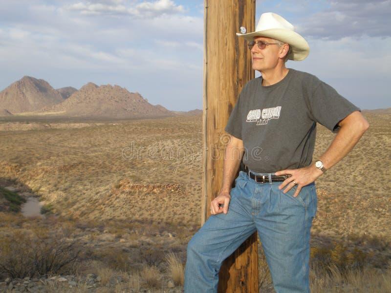 Cowboy in de woestijn stock fotografie