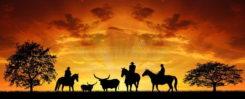Cowboy della siluetta fotografie stock