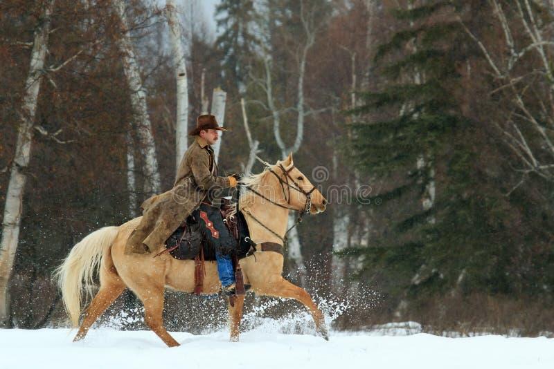 Cowboy, der oben Schnee reitet und tritt stockfotos