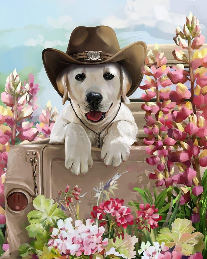 Cowboy di golden retriever illustrazione vettoriale