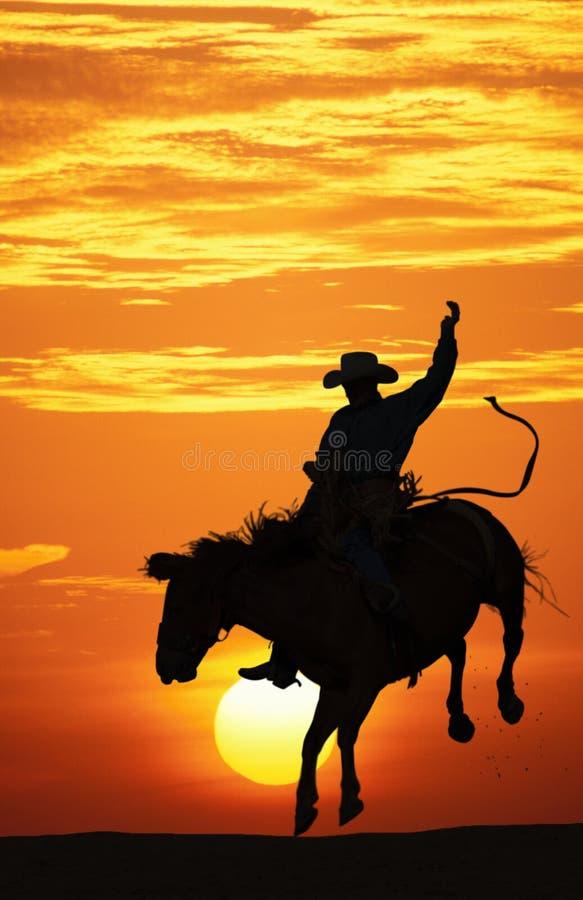 Cowboy die een bucking paard berijdt.