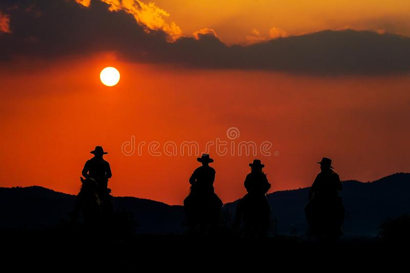 Cowboy die een paard berijden dichtbij zon stock afbeeldingen