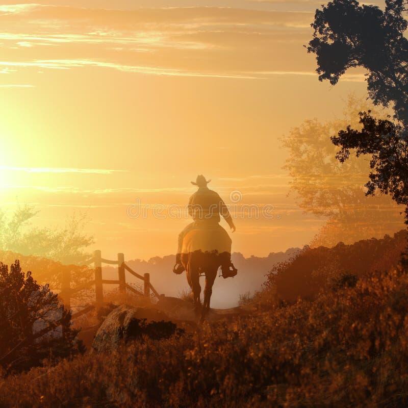 Cowboy die op een paard I. berijdt. stock fotografie