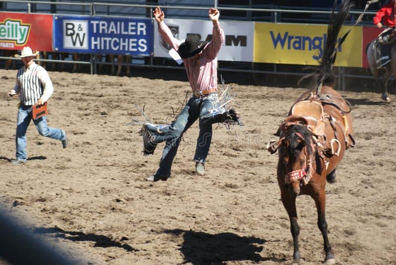 Cowboy die van het bucking van paard wordt geworpen stock afbeeldingen