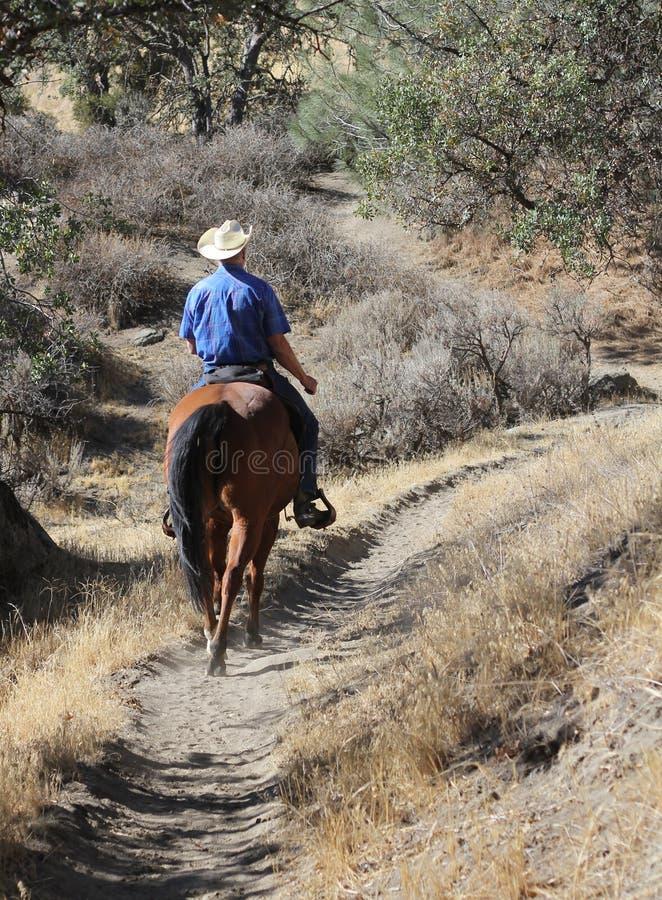 Cowboy die zijn paard berijden. stock foto