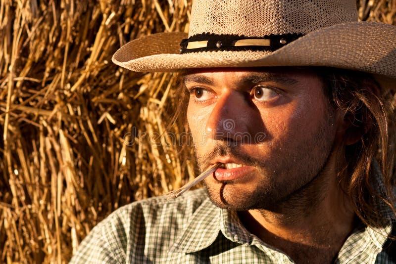 Cowboy dur photographie stock libre de droits