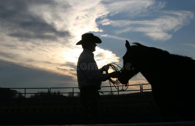 Cowboy e cavallo fotografia stock
