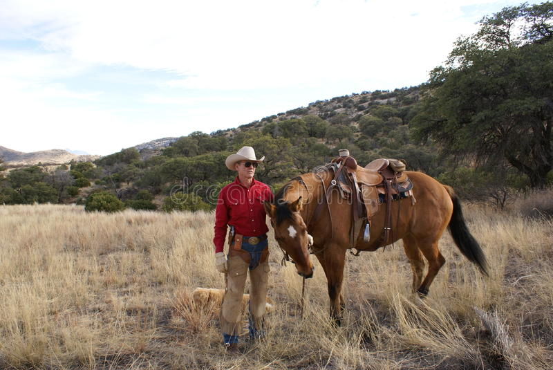 Cowboy e cavalo foto de stock royalty free