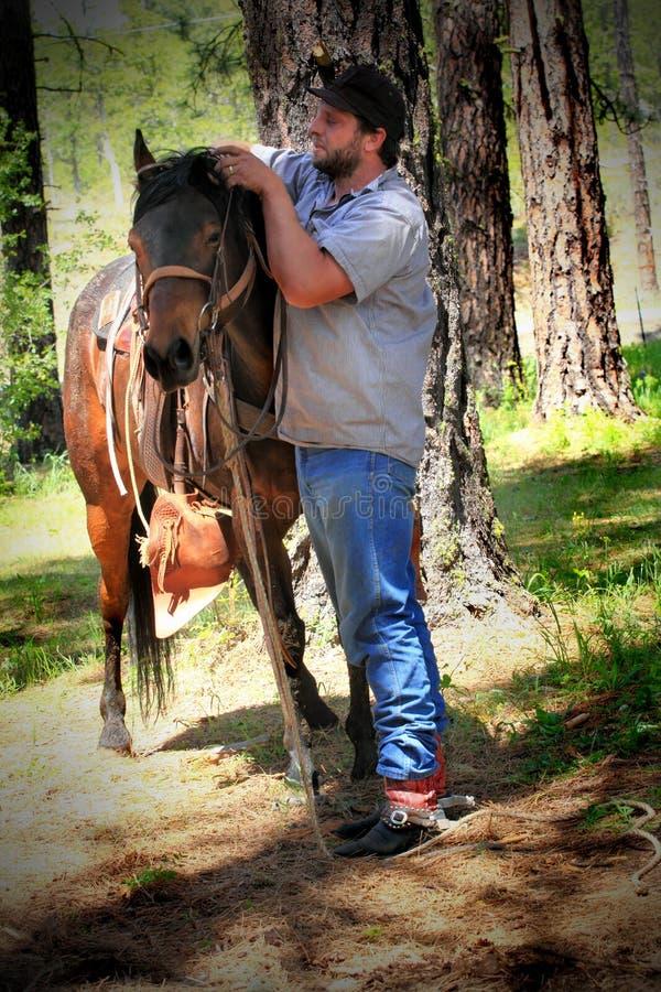 Cowboy en paard stock foto