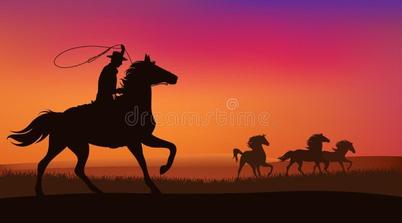 Cowboy en paarden vector illustratie