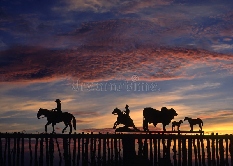 Cowboy Fence royalty free stock images