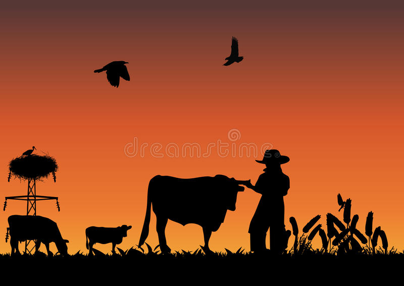 Download Cowboy in field stock vector. Illustration of land, grass - 15437252