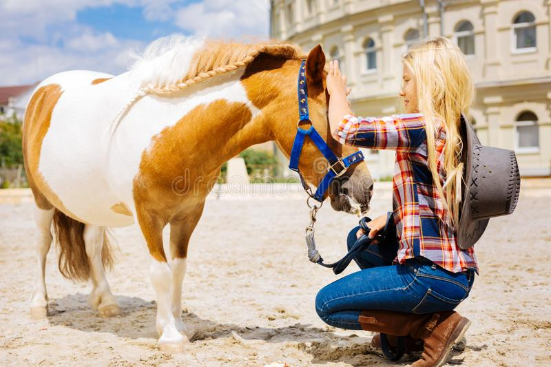 Cowboy girl wearing stylish hat coming to little cute horse. Stylish hat. Cowboy girl wearing stylish hat feeling cheerful while coming to little cute horse and royalty free stock image