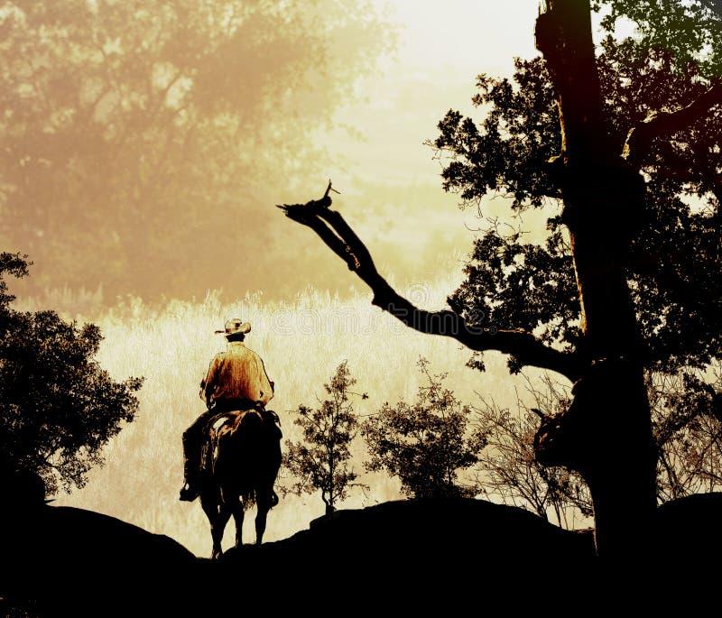 Download Cowboy in golden hills. stock illustration. Illustration of gold - 27173889