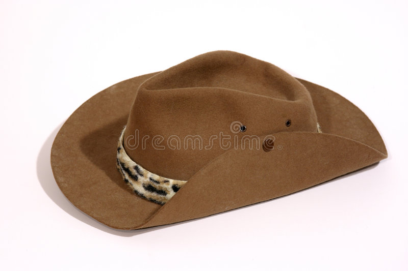 Download Cowboy Hat stock image. Image of brown, rugged, cowhand - 321759