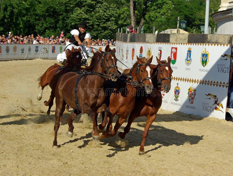Cowboy On Horse Editorial Stock Photo