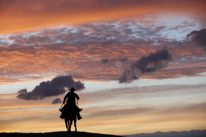 Download Cowboy on a horse stock image. Image of adventure, landscape - 83393579