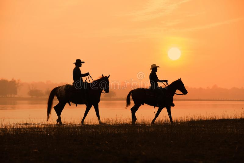 Cowboy and horse with sunset. Background royalty free stock image