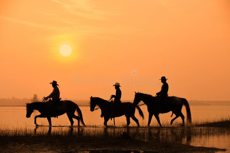 Cowboy and horse with sunset. Background stock photography