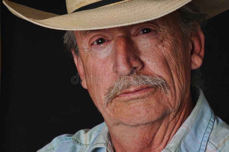 Cowboy idoso fotografia de stock royalty free