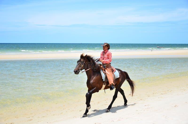 Cowboy ist Reiten Pferdeweg auf dem Strand stockfotografie