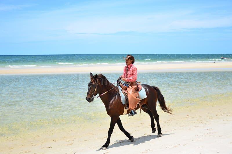 Cowboy ist Reiten Pferdeweg auf dem Strand stockfotos