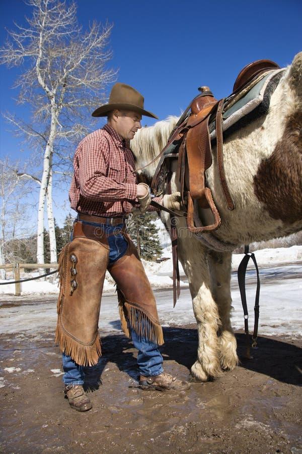 Cowboy mettant la selle sur le cheval photos stock
