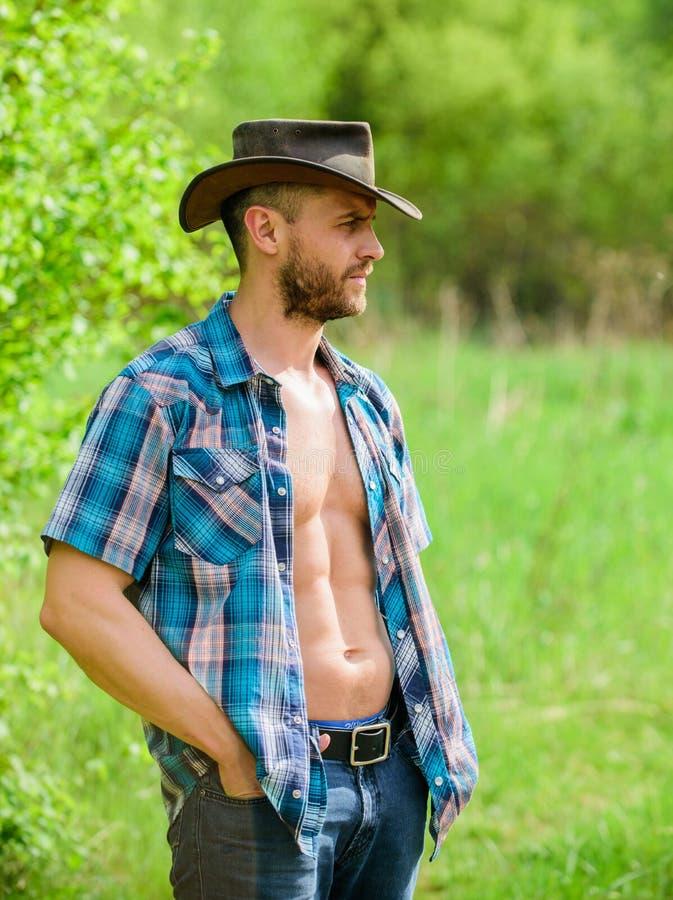 Cowboy muscolare del torso del fronte non rasato dell'uomo Concetto dell'azienda agricola Cowboy barbuto del tipo in natura I sei fotografia stock