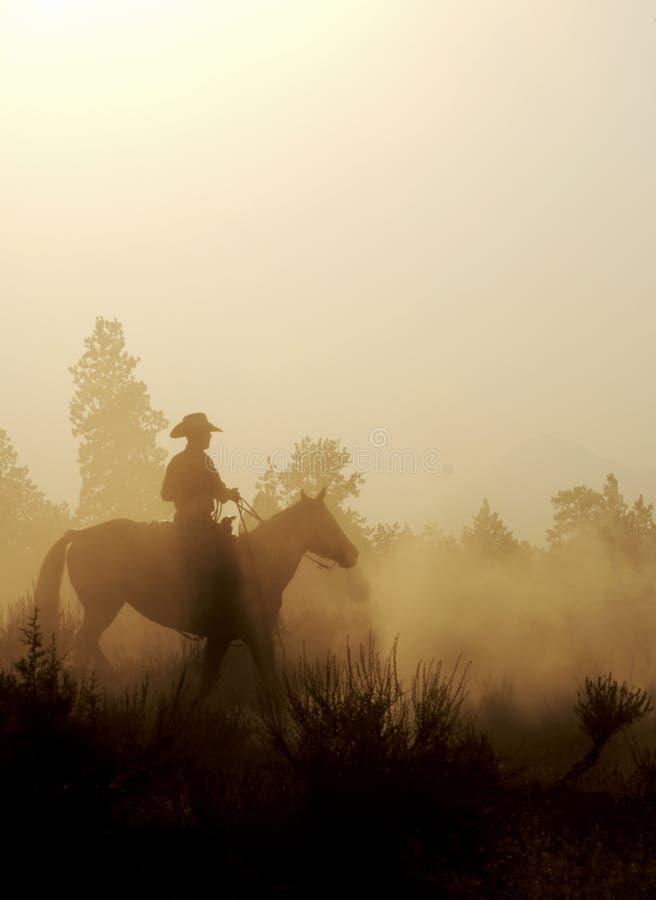 Cowboy nel deserto immagini stock libere da diritti