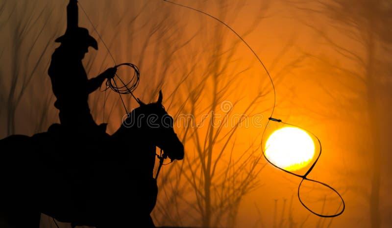 Cowboy no Lasso do cavalo que Roping Sun fotos de stock royalty free