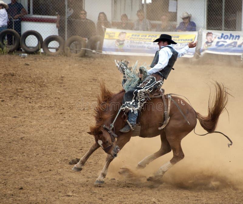 Cowboy op een bucking wild paard royalty-vrije stock foto's